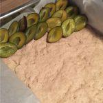Pflaumenkuchen mit Kokosraspeln