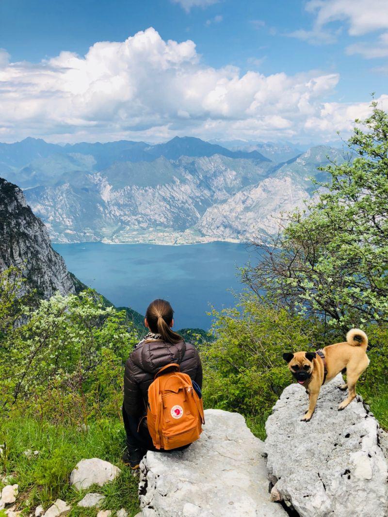 Urlaub mit Hund. Gardasee mit Hund. urlaub in Italien mit Hund
