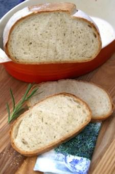 Crusty bread w/ yogurt and honey