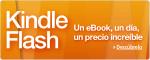 Kindle Flash_bakoneth