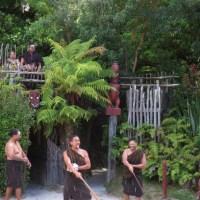 Maori evening in Rotorua