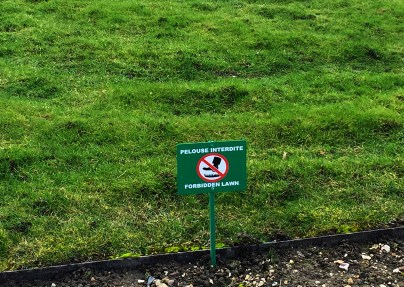 """""""Forbidden lawn"""" here, people..."""