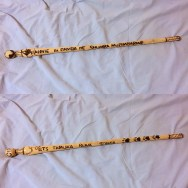 My lion stick. (Thanks, Tino!)