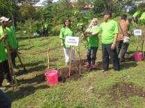 Gerakan menanam seribu pohon