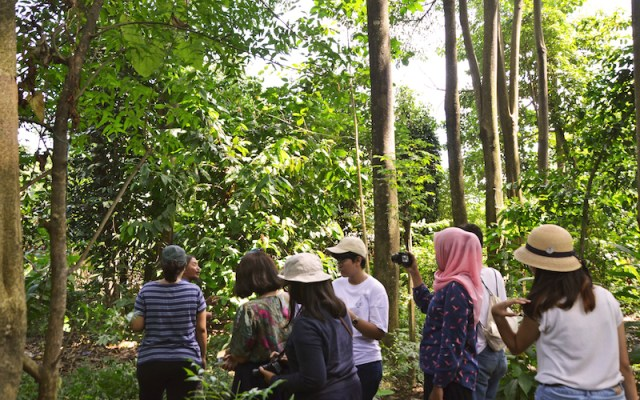 Dokumentasi Foto : Observasi Pangan Liar di Lahan Terlantar