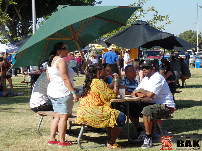 wing fest 3 pic 6