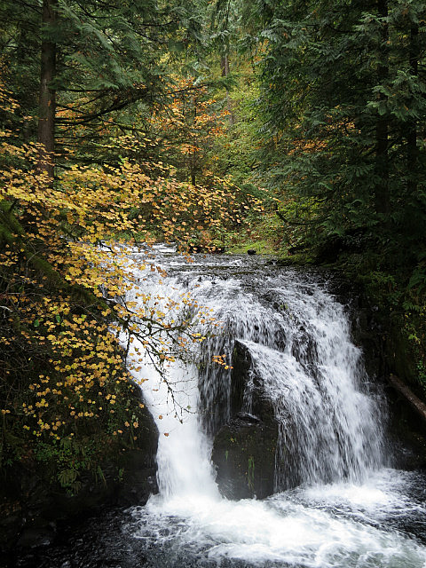 10.1381605102.small-waterfall-preceding-multnomah