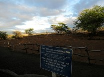 12.1419585917.sun-starting-to-set-at-puako-petroglyphs