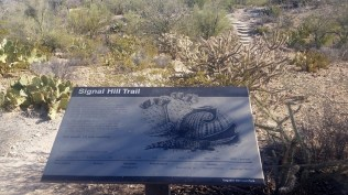 Signal Hill trail