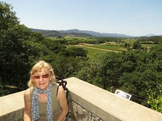8.1368794859.silverado-winery