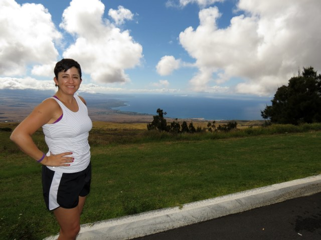 View of the Kohala coast from an overlook