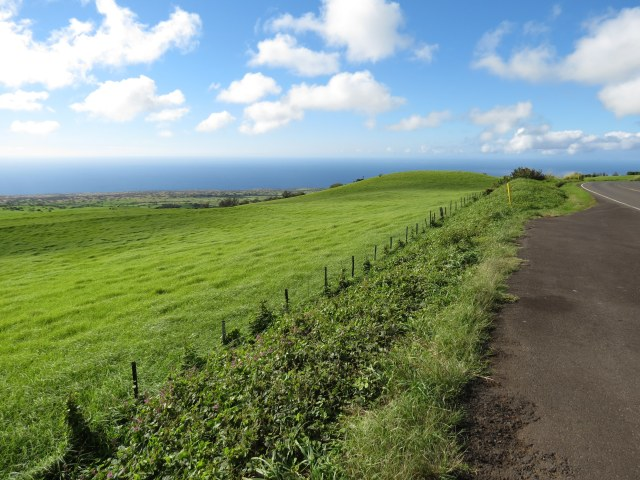 Back on Kohala Mountain Rd