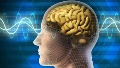 صورة أفضل الأطعمة والعادات اليومية لتعزيز قوة الدماغ