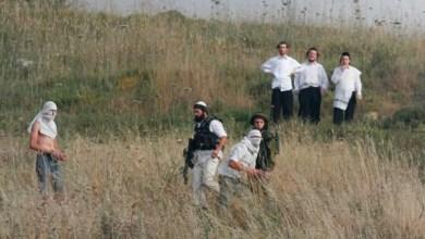 صورة مستوطنون يهاجمون مركبات المواطنين جنوب نابلس