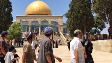 """صورة 103 مستوطنين يقتحمون باحات """"المسجد الأقصى"""""""