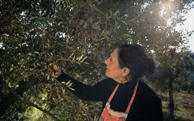 Especial Día de la Mujer rural: Las mujeres en el campo