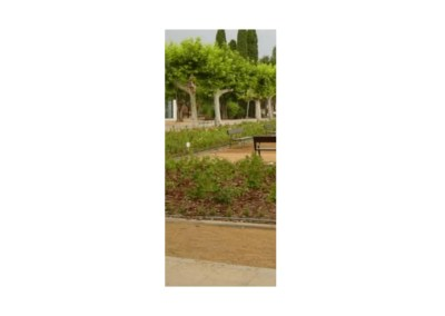 Ajardinamiento del entorno del recinto de entrada y rosaleda del Zoológico de Córdoba.