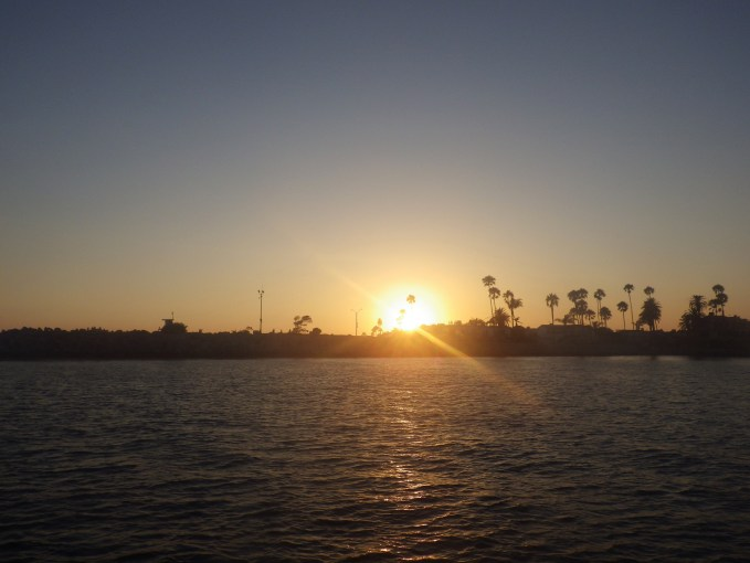 Dolphin Watching sunset
