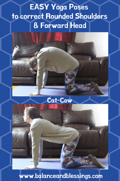 Easy Yoga Poses to correct Rounded Shoulders & Forward Head cat-cow