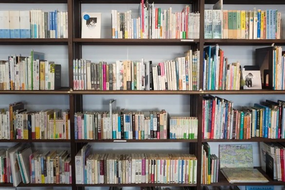 A bookshelf shows the endless amounts of ways that individuals can invest in their own growth. It is vital to continuously invest in your own growth.