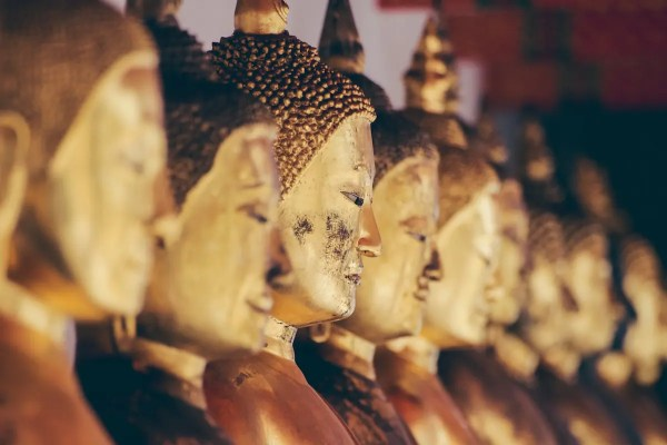 A row of Buddha statues lined up.