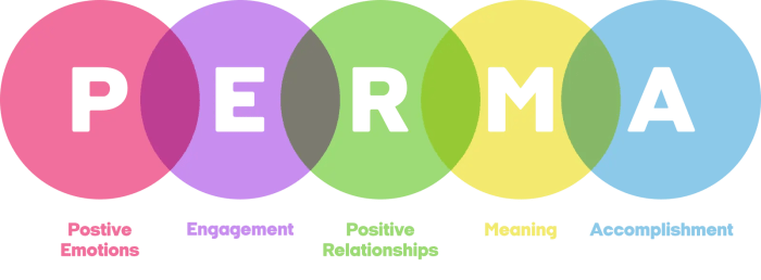 An image depicts Martin Seligman's PERMA Model which is used to outlines the path individuals can take towards sustainable well-being.