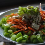 Tips for Starting a Plant Based Diet