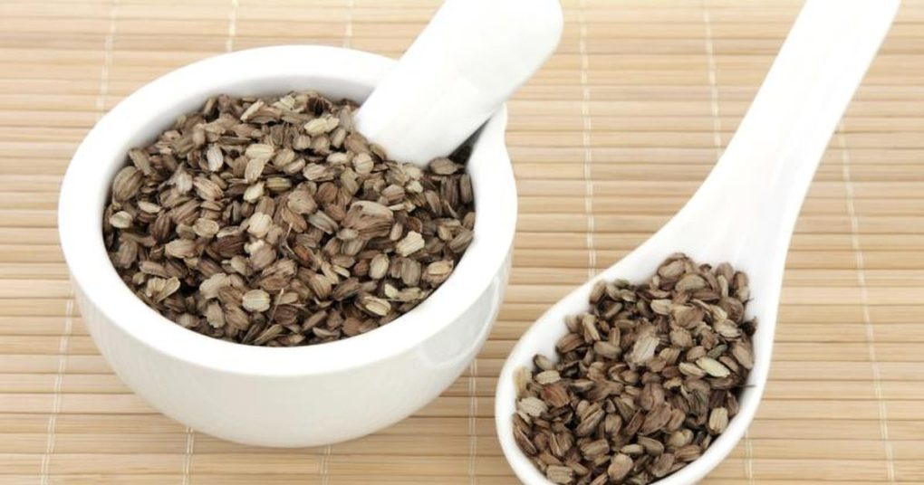 how to make burdock root oil