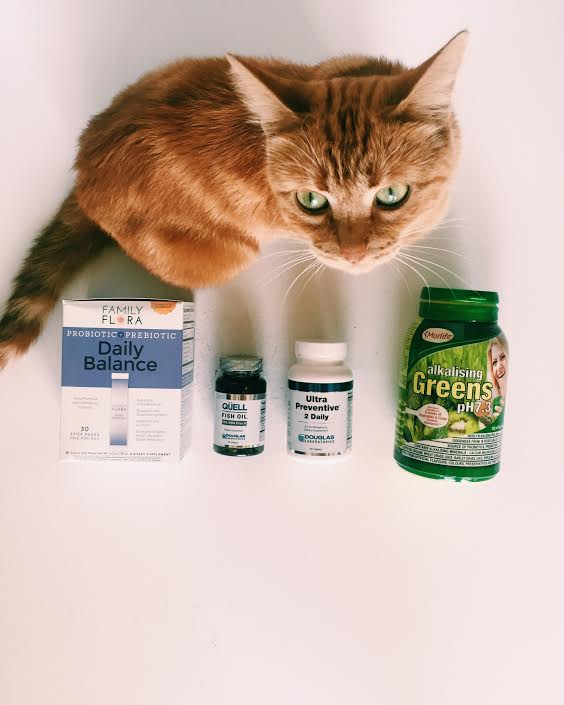 supplements-to-take-everyday