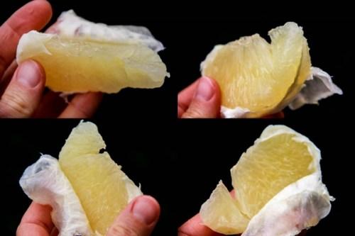 grapefruit segment collage