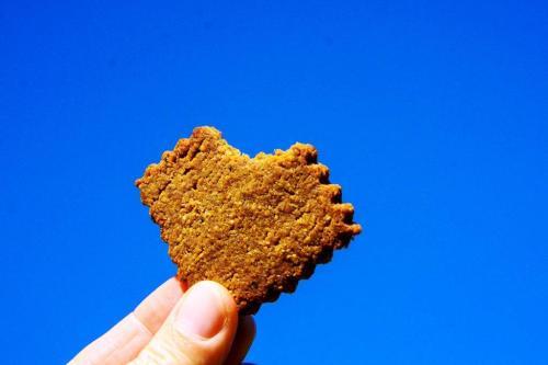 Masala Spice Cookies Paleo Gluten Free (14)
