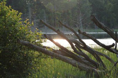 clam lake leelanau