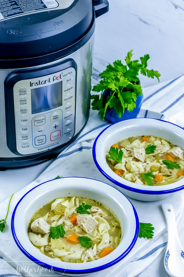 instant pot with bowl of chicken noodle soup