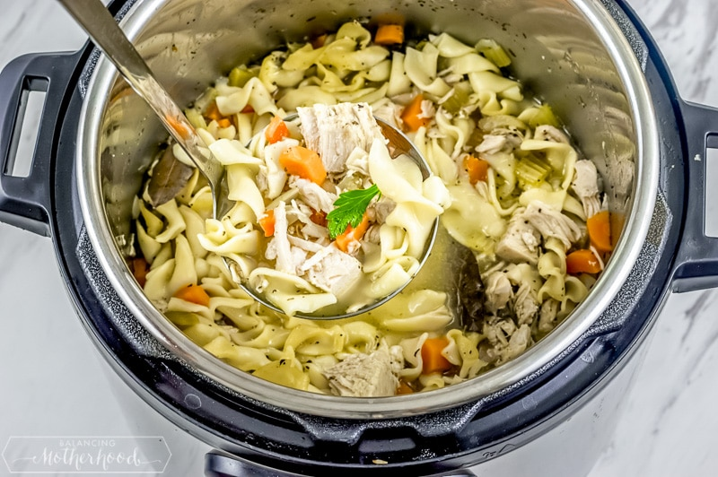 Instant pot chicken soup!