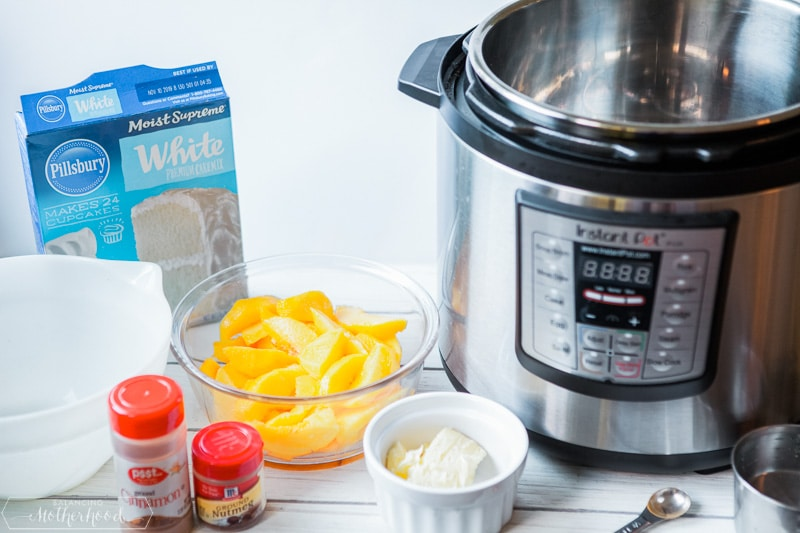 Looking for a good dessert for the family? Check out this Easy Instant Pot Peach Cobbler recipe!