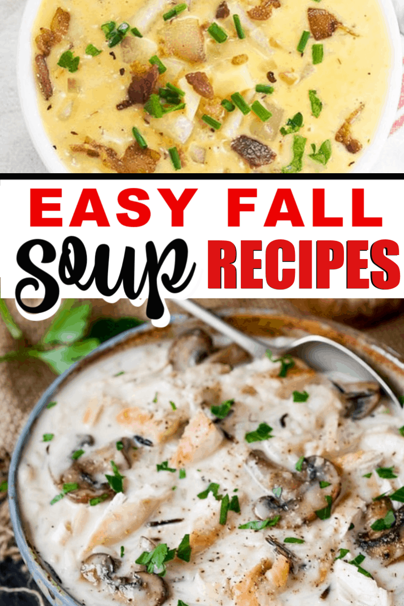 10 easy and delicious fall soup recipes! Chowders, soups, and stews! Click and save now so you'll have them later.