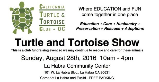 Turtle and Tortoise Show
