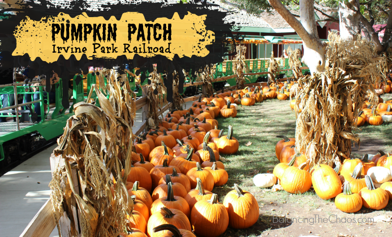 WIN Prize Pack: Irvine Park Railroad Pumpkin Patch Opens September 16th | @IrvineParkRR #PumpkinPatch