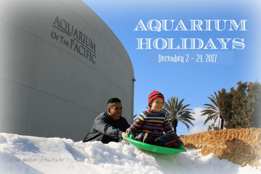 Aquarium-of-the-Pacific-Snow-Play