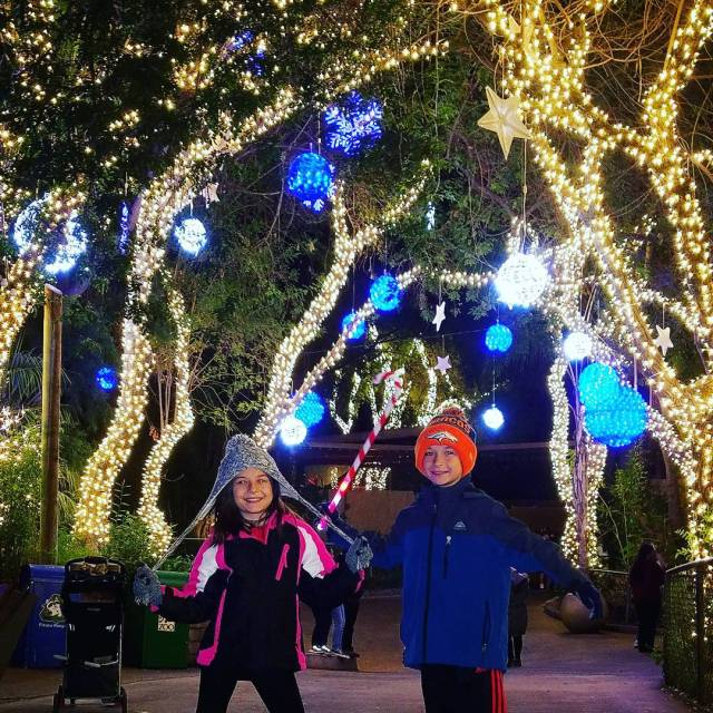 A magically festive evening walking through the LAZOOLIGHTS AD Beautifulhellip