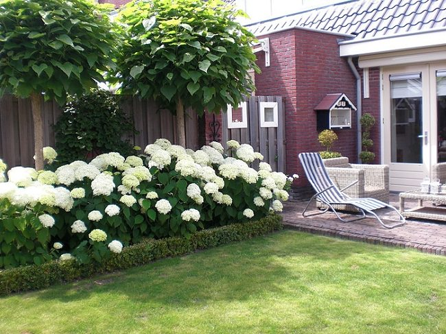 Large Garden Landscaping Ideas