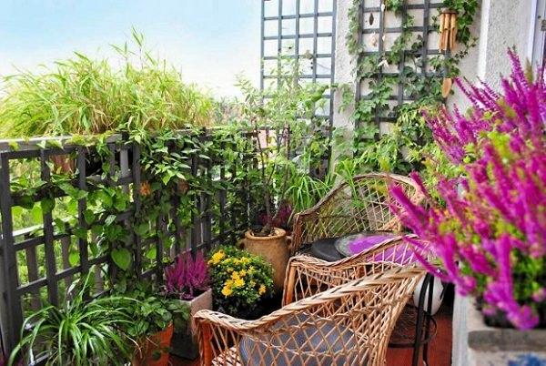 Balcony Garden Design Tips 4 Mini