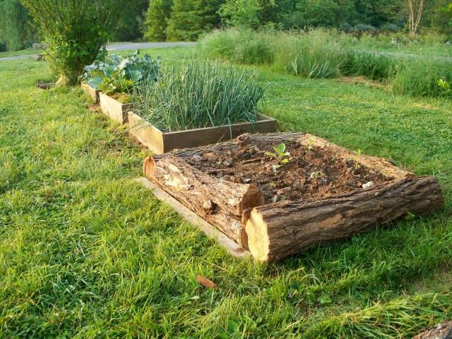 18 Great Raised Bed Ideas   Raised Bed Gardening   Balcony ... on Backyard Raised Garden Bed Ideas id=56414