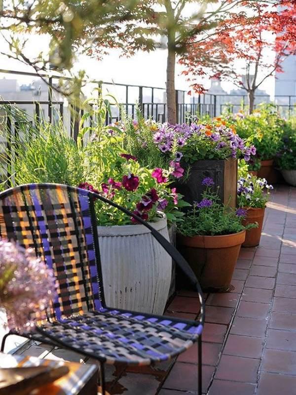 10 Tips to Start a Balcony Flower Garden | Balcony Garden ... on Backyard Balcony Ideas id=16060