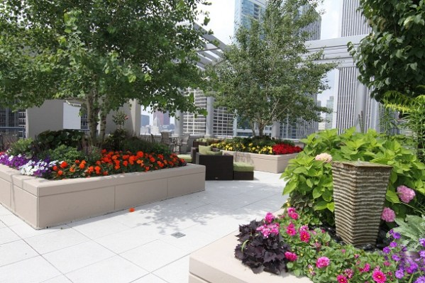 roof garden trees 11 Most Essential Rooftop Garden Design Ideas and Tips