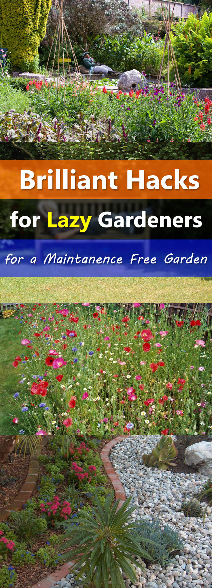 Easy Landscaping Tips for a Low Maintenance Garden ... on Low Maintenance Backyard Design  id=80625