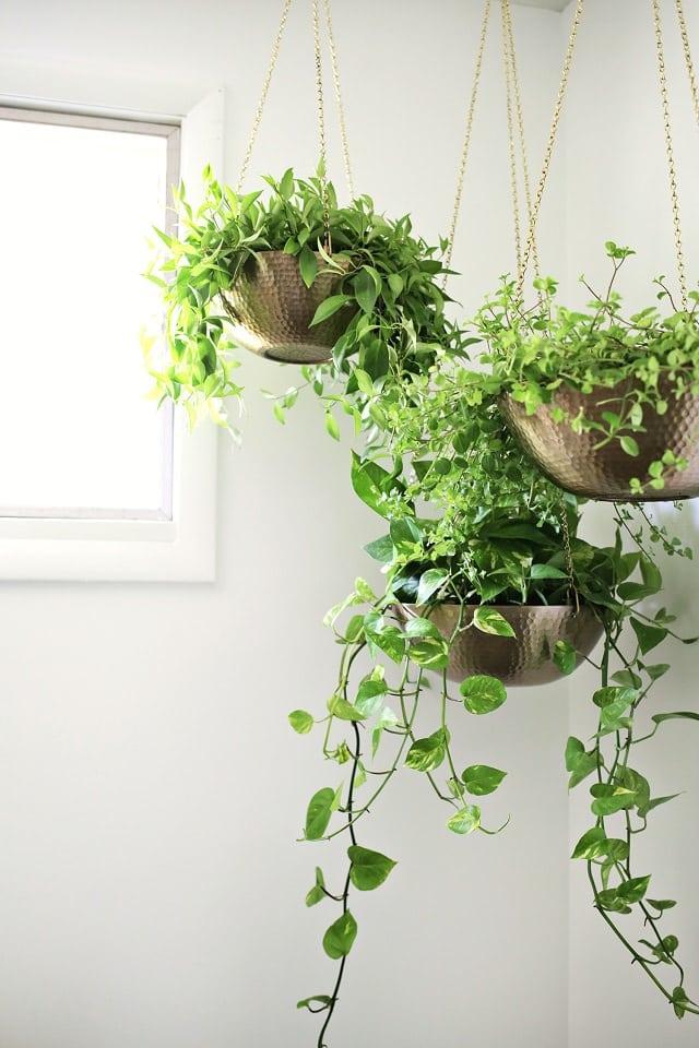 16 Offbeat DIY Hanging Planter Ideas | Balcony Garden Web on Picture Hanging Idea  id=42924