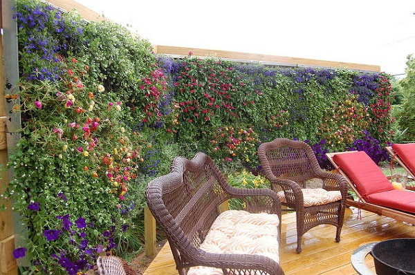 26 DIY Garden Privacy Ideas That Are Affordable ... on Tree Planting Ideas For Backyard id=97583