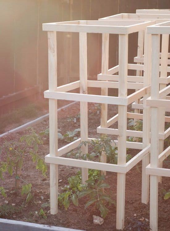 18 Diy Tomato Cage And Stake Ideas Balcony Garden Web
