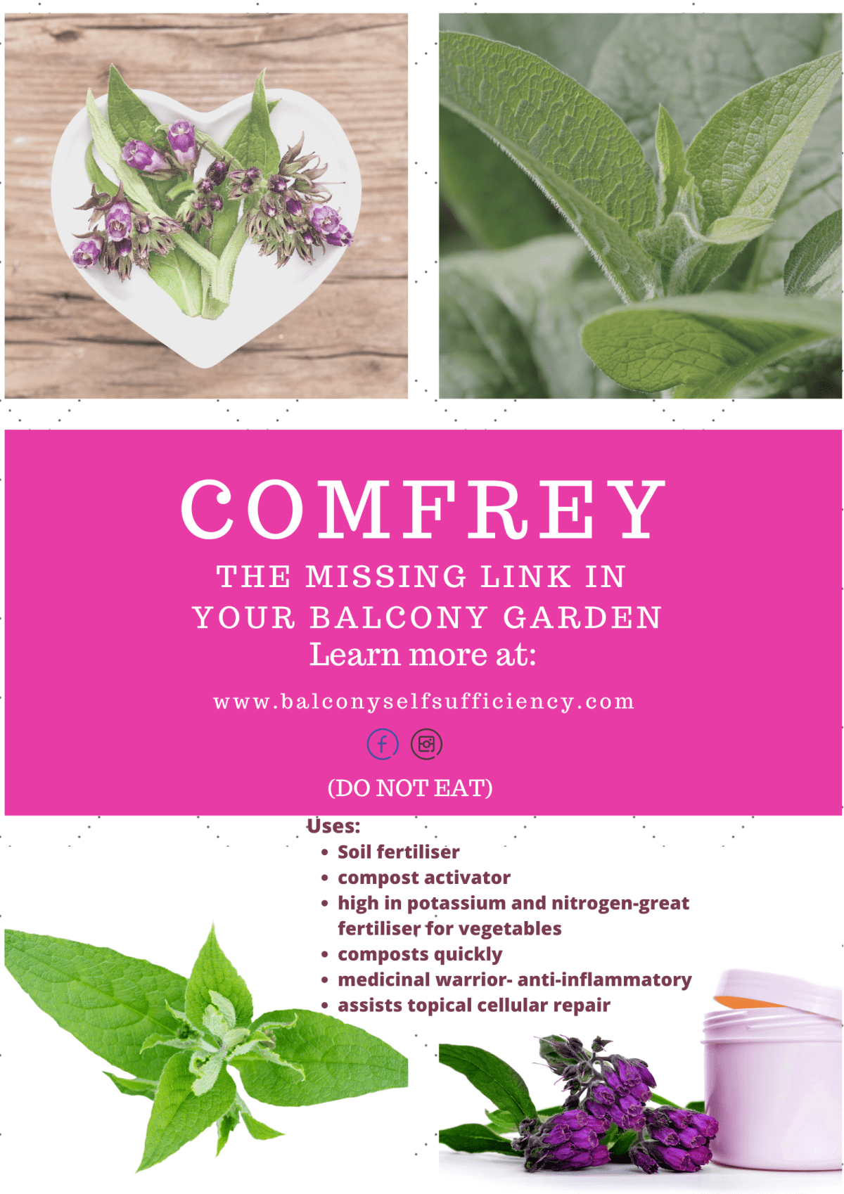 Uses for Comfrey in an organic balcony garden